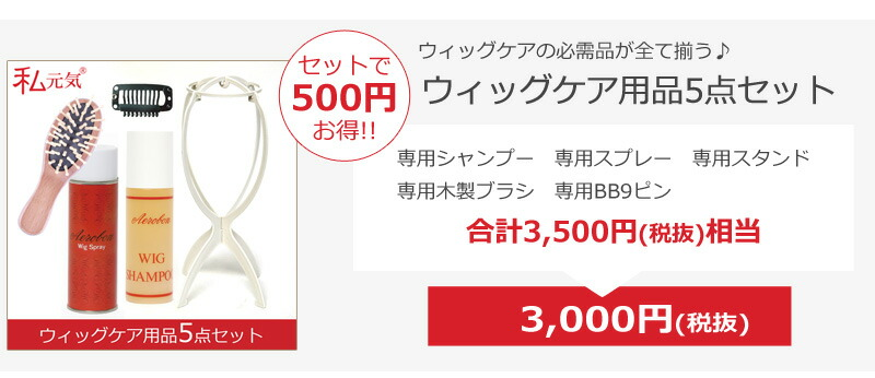 ウィッグケア5点セット500円お得!