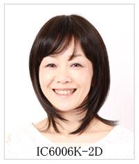 IC6006K-2
