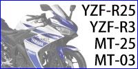 YZF-R25用レバー