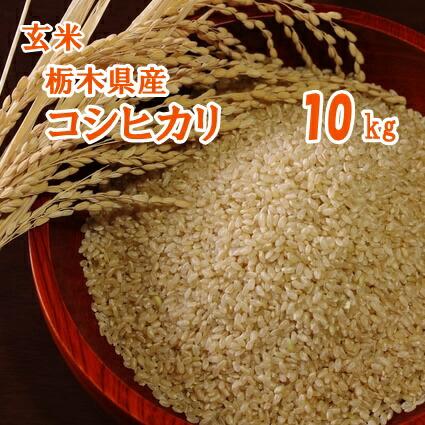 栃木県産コシヒカリ 玄米 10kg