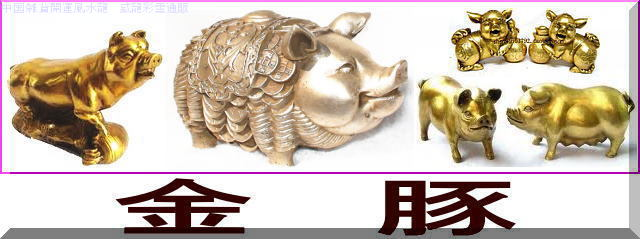 金豚(ブタ)
