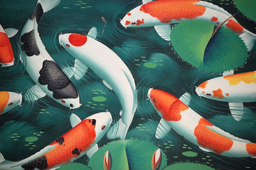 Auc islandstyle rakuten global market veriato koi for Koi carp artwork