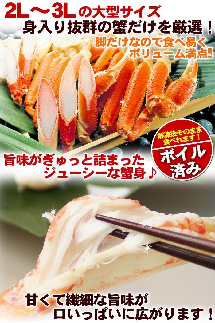 ズワイガニ 【送料無料】 【送料無料市場】 ずわい蟹 5kg 人気 2L〜3Lサイズ ずわいがに 訳あり 父の日 かに鍋