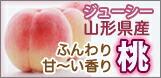 山形 白桃 黄金桃 桃