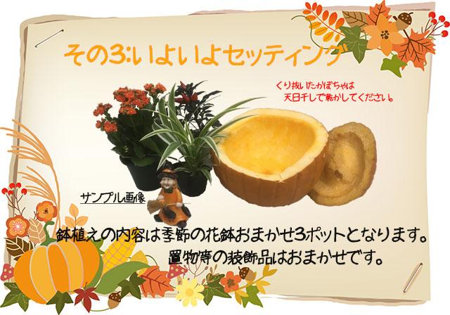 ハロウィン 生 カボチャ 飾り 手作り キット ギフト 寄せ篭 花鉢