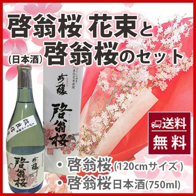 啓翁桜 花束