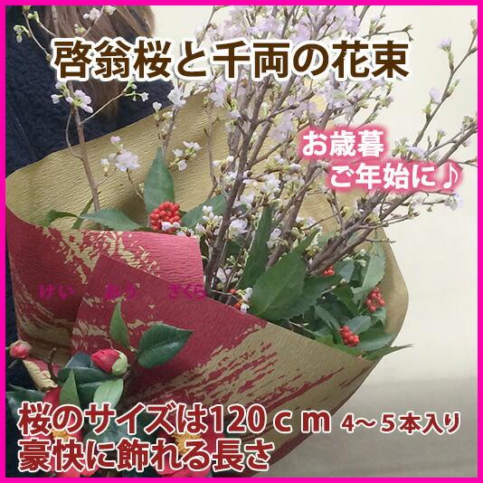 啓翁桜、けいおうざくら、ケイオウザクラ 山形特産 日本で一番早く咲く桜を全国発送