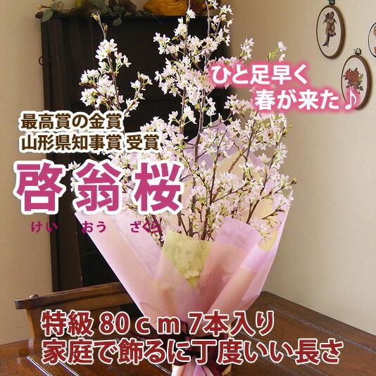 啓翁桜の花束 山形県産 お歳暮 ご年始におススめ