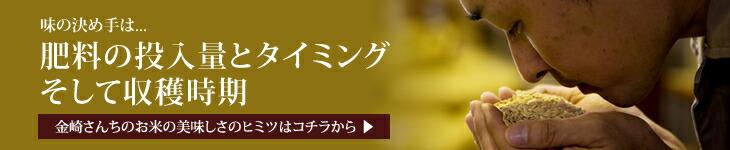 金崎さんちのお米の美味しさのヒミツ