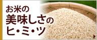 お米の美味しさのヒミツ