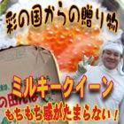 弁次郎商店 by kanekorice