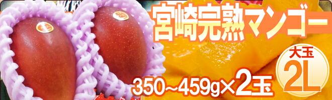 宮崎マンゴー2L2玉