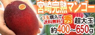 宮崎マンゴー400-650g