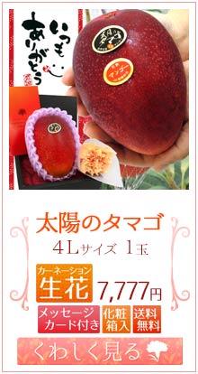 タマゴ4L1玉&生花