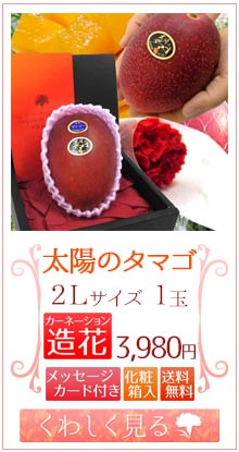 タマゴ2L1玉&造花