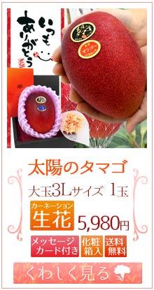 タマゴ3L1玉&生花