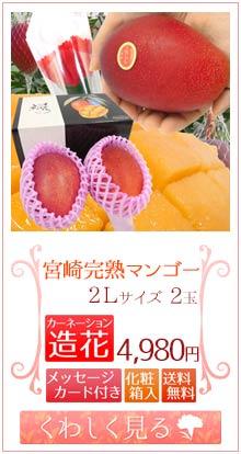 マンゴー2L2玉&造花