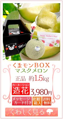 くまモンメロン1玉&造花