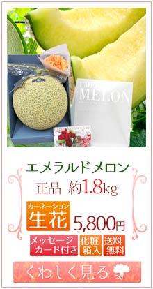 エメラルドメロン1.8kg&生花