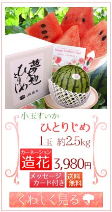 ひとりじめ2.5kg1玉&造花