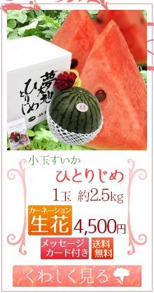 ひとりじめ2.5kg1玉&生花