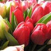 花束 フラワーギフト