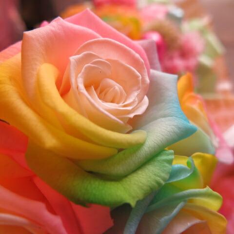 ミニオン入り 花