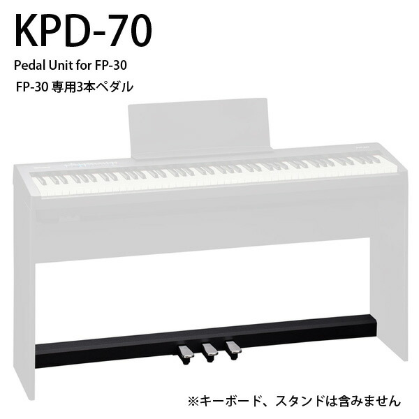 Roland(ローランド) / KPD-70-BK  - FP-30ペダルユニット -