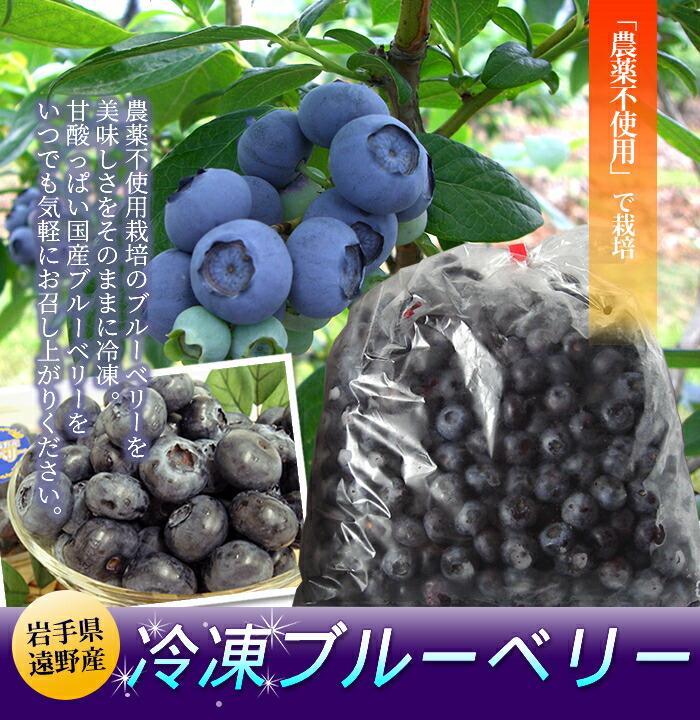 岩手県遠野で農薬を使用せずに栽培したブルーベリーを美味しさをそのままに冷凍!甘酸っぱい国産ブルーベリーをいつでも気軽にお召し上がりいただけます♪