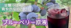 岩手県産の無農薬ブルーベリーから作ったブルーベリージュース