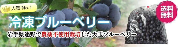 当店売れ筋商品!送料無料の国産冷凍ブルーベリー
