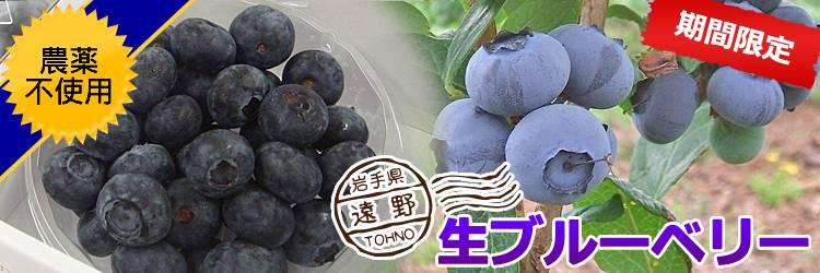夏季限定!生ブルーベリー 農薬不使用!
