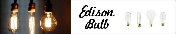 エジソンカテゴリー