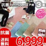 綺麗なパステルカラーのお値打ちカーペット ラグ じゅうたん 抗菌・ホットカーペット対応・安心の日本製! 3帖 176x261