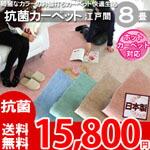 綺麗なパステルカラーのお値打ちカーペット ラグ じゅうたん 抗菌・ホットカーペット対応・安心の日本製! 8帖 352x352