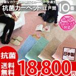 綺麗なパステルカラーのお値打ちカーペット ラグ じゅうたん 抗菌・ホットカーペット対応・安心の日本製! 10帖 352x440