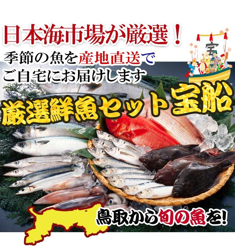鮮魚 セット 送料無料 詰め合わせ