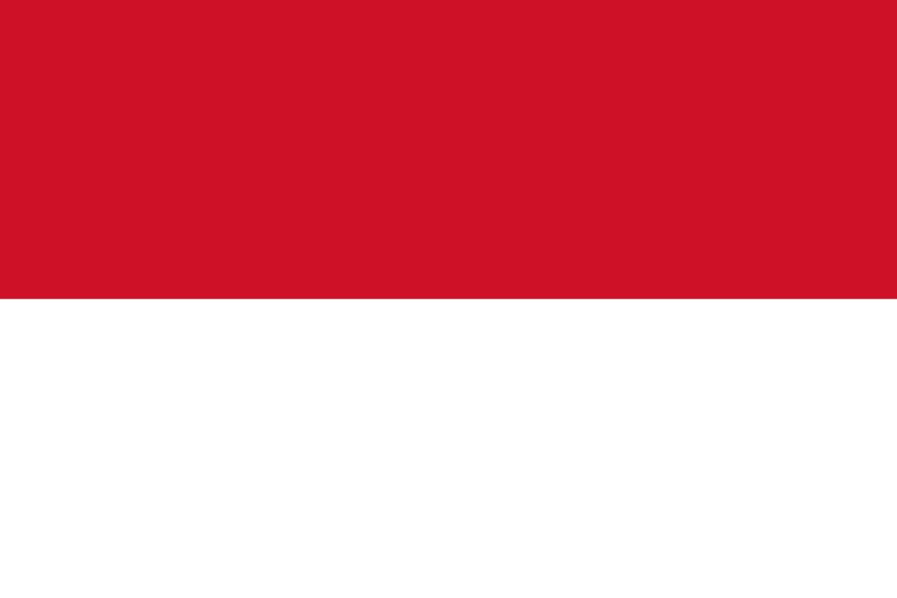 インドネシアwifiルーターレンタル