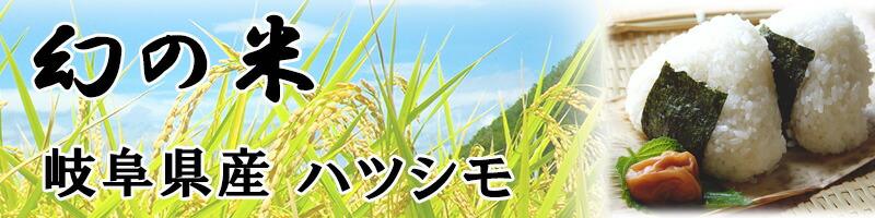 岐阜県産 ハツシモ 給食や飲食店 業務用 寿司職人 冷めても美味しい お米