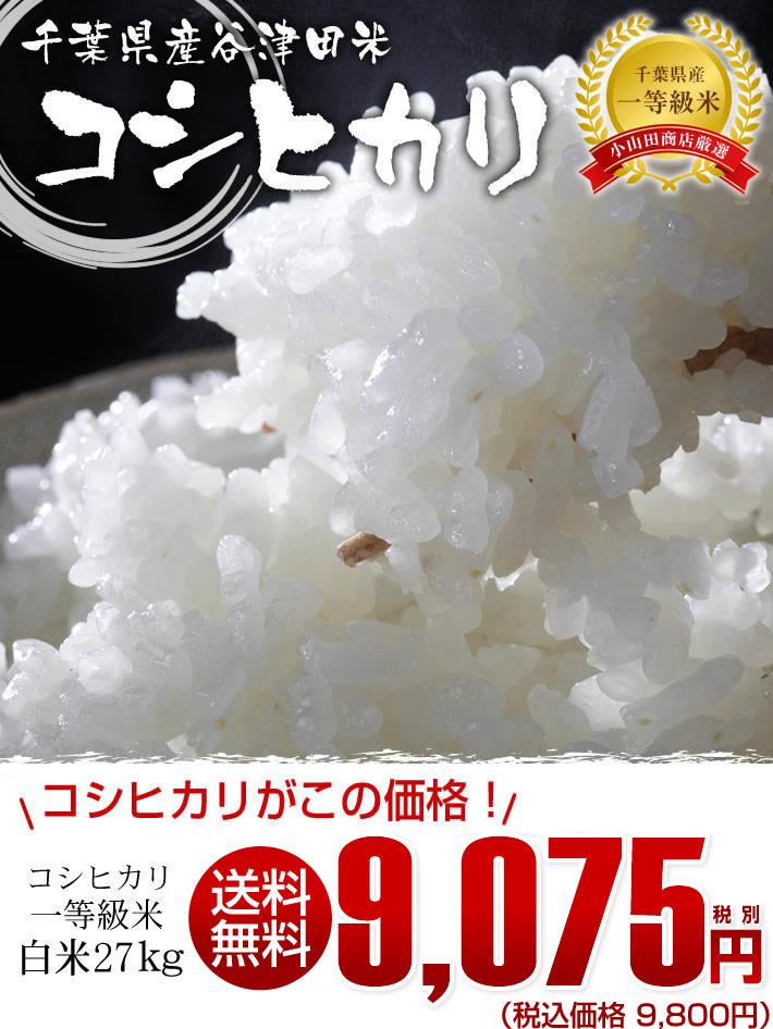 千葉県産のお米コシヒカリ精米27kg一等米