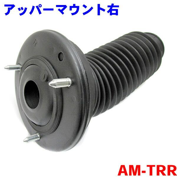 AM-TRR