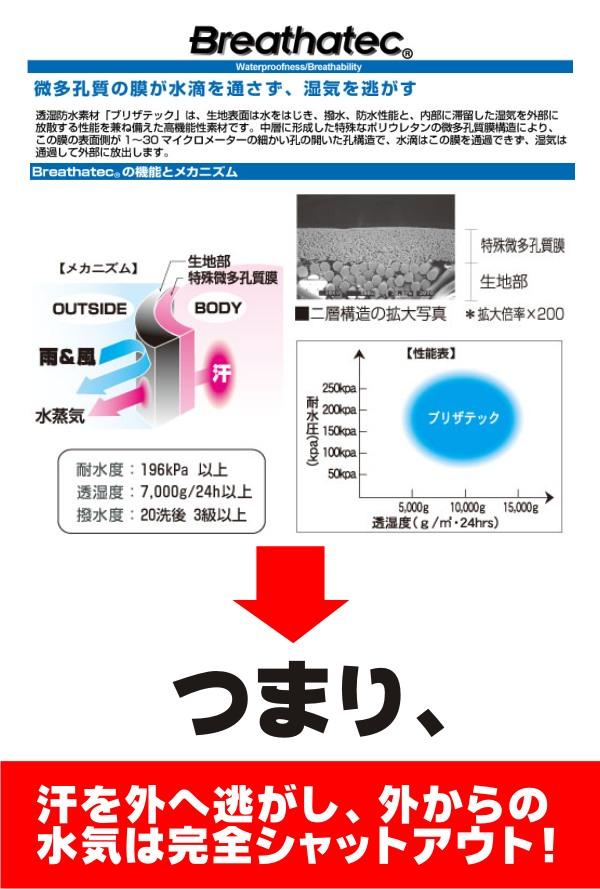 prono2_html_cc.jpg