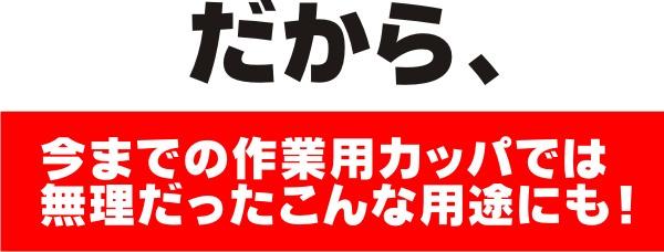 prono2_html_dd.jpg