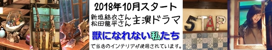 獣になれない私たち ドラマセット 新垣結衣 松田龍平 ガッキー 5TAP 家具