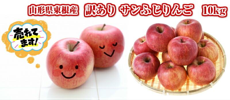山形県東根産 訳ありサンふじりんご