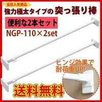 NGP-110 の2本セット