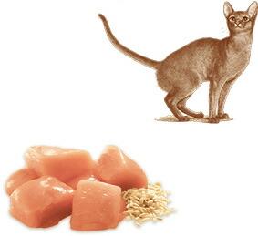 ニュートロ ナチュラルチョイス キャット 室内猫用 アダルト チキン