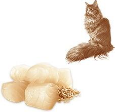 ニュートロ ナチュラルチョイス キャット 避妊・去勢猫用 シニア 白身魚