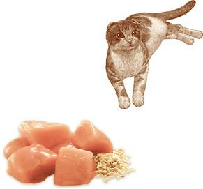 ニュートロ ナチュラルチョイス キャット 食にこだわる猫用 アダルト チキン