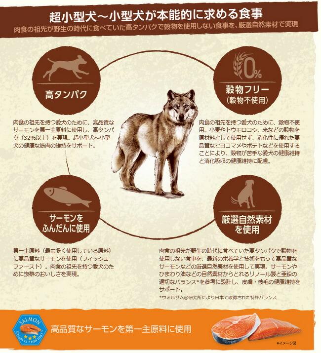 ニュートロ ワイルド レシピ 超小型犬~小型犬用 成犬用 サーモン